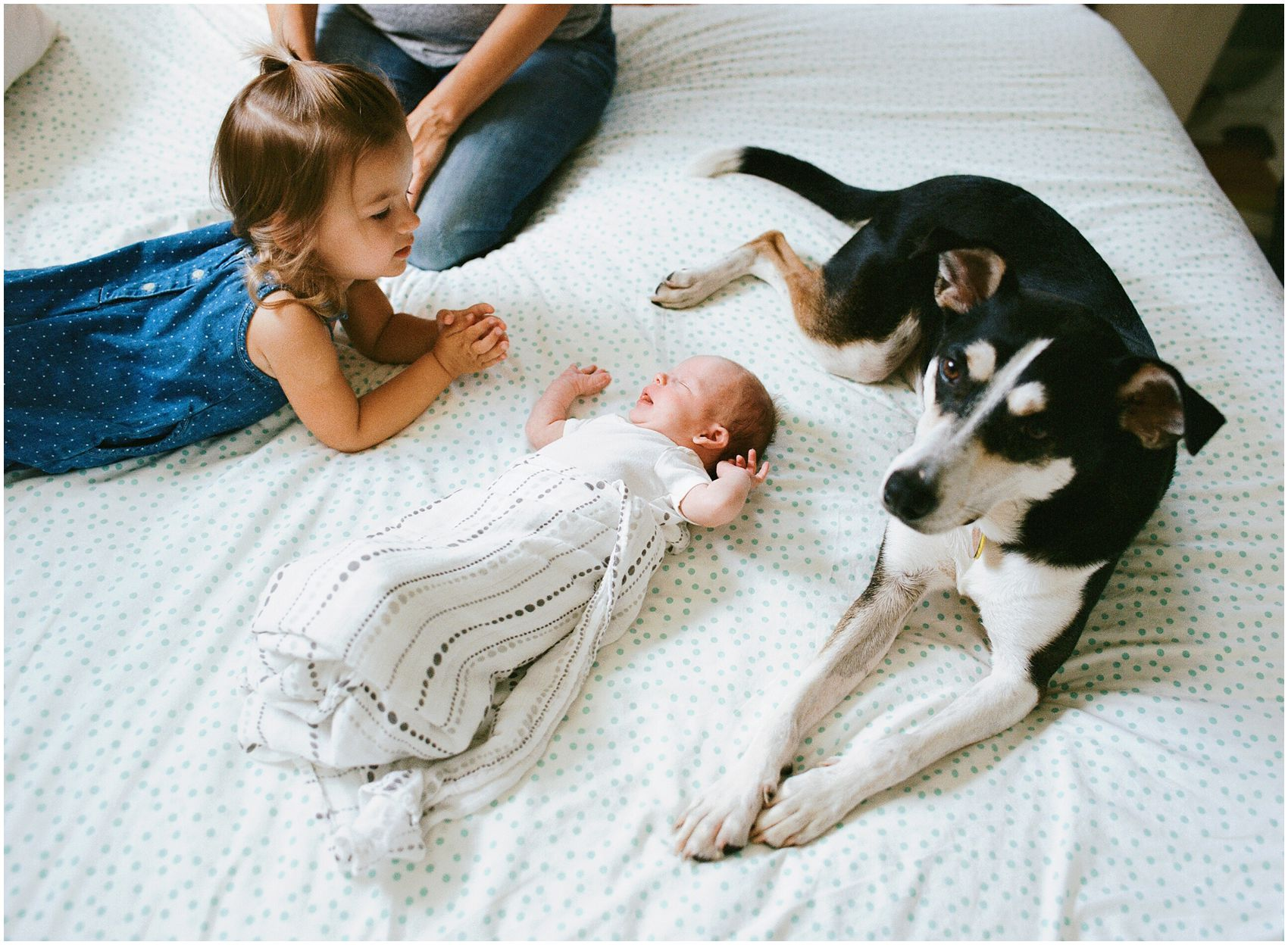baby girl with a dog and older sister in newborn photos at home