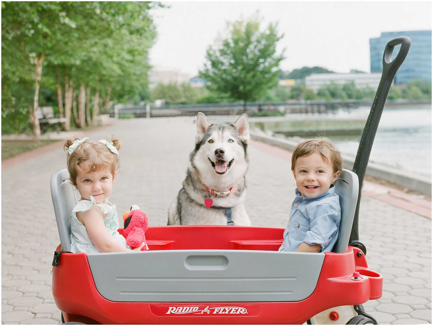 smiling twin boy and twin girl with a dog in a Radio Flyer by Hoboken waterfront