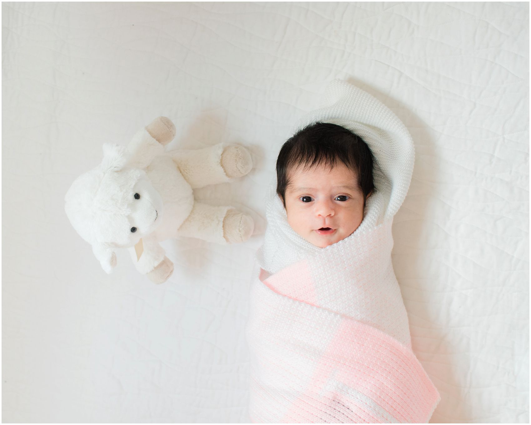 Best Newborn Photography with 3 weeks old baby girl has her eyes wide open next to a toy lamb