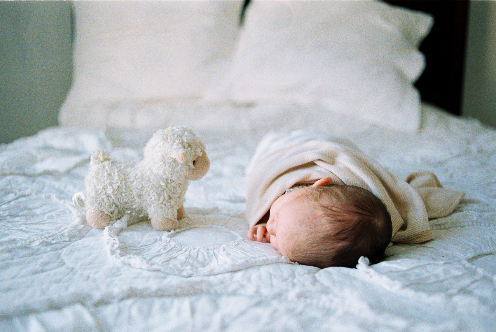 newborn baby sleeping with a soft toy on bed with Miriam Dubinsky Photography
