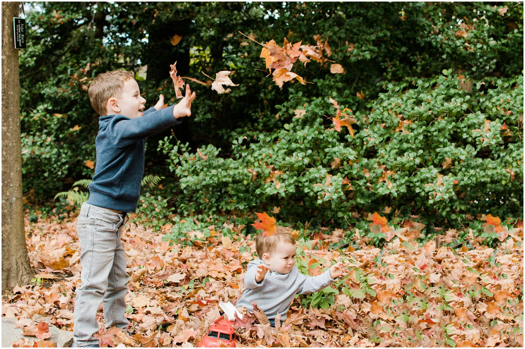 two little brothers playing with leaves in the park