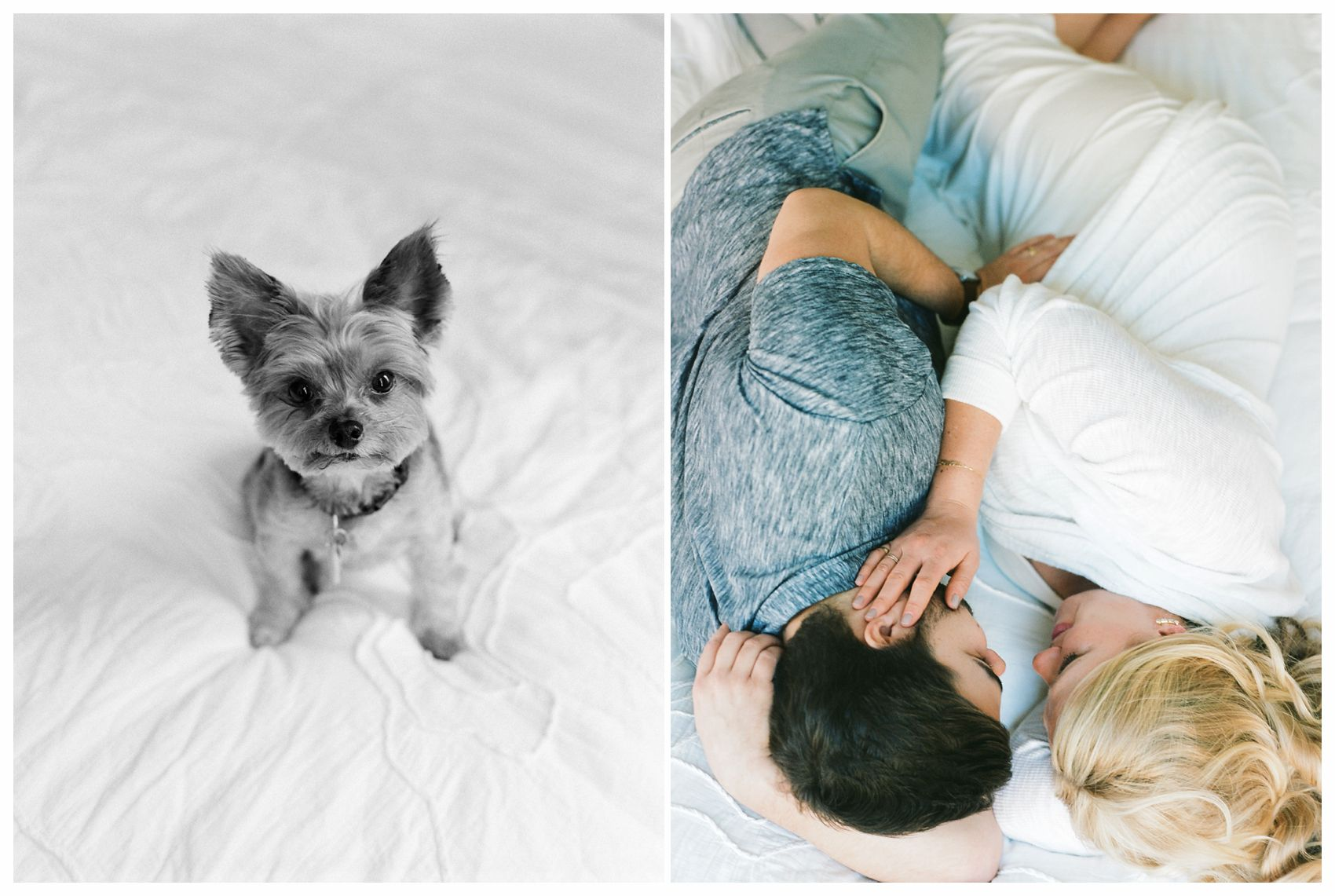 pregnant couple laying and bed and their pup is looking at the camera