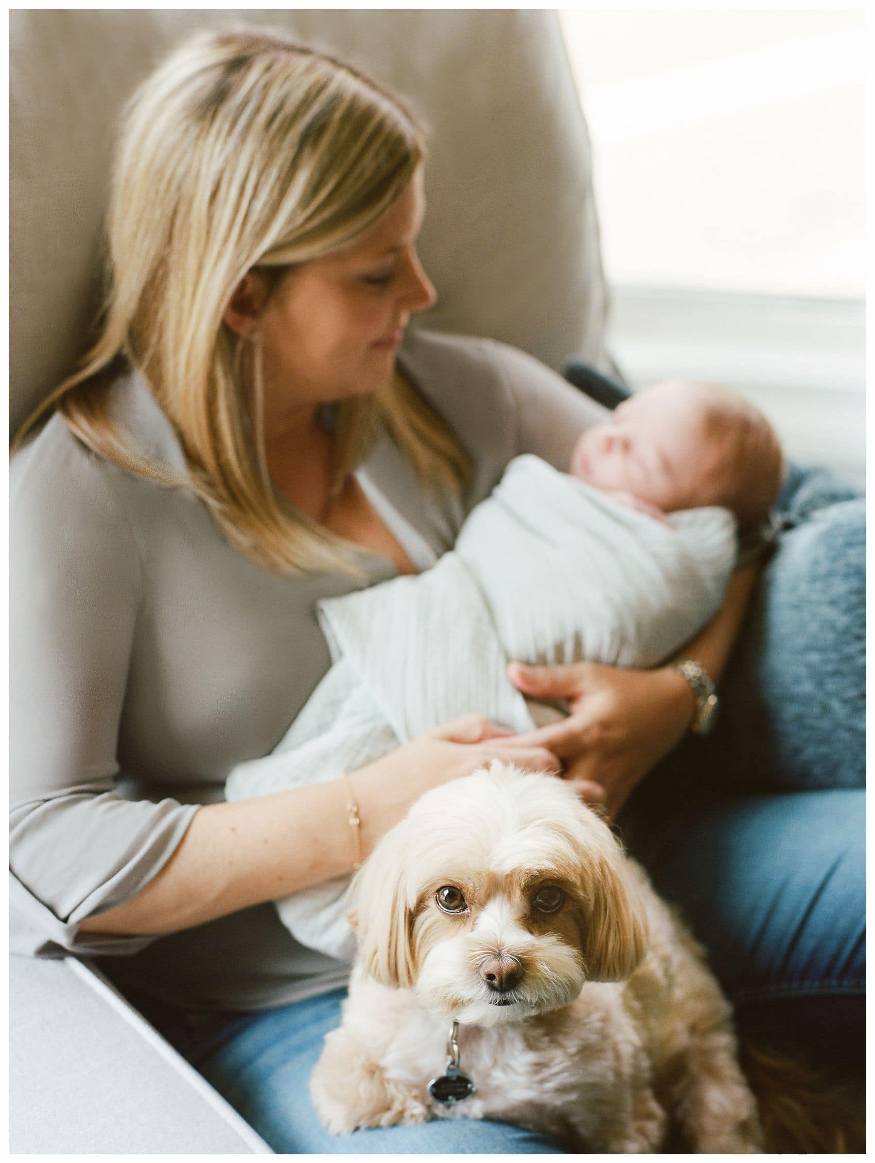 Tips on How to choose best newborn photographer with mom snuggling with a newborn baby boy and family dog